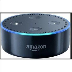 Other - Speaker: Echo Dot